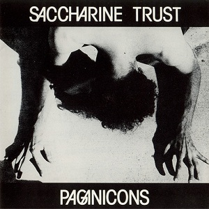 Saccharine_Trust_-_Paganicons